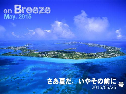 Aerial Island / Photo by PicturesqueBermuda.bm
