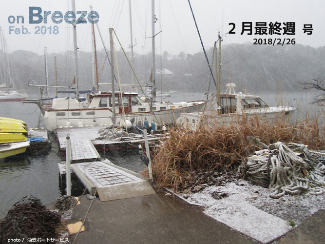 雪の降る油壺 photo by 油壺ボートサービス